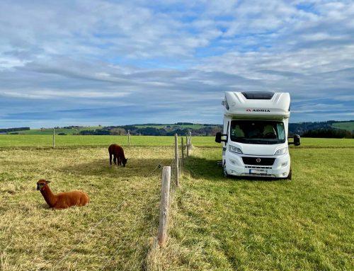 Staybetter.farm – der Geheimtipp in die Natur
