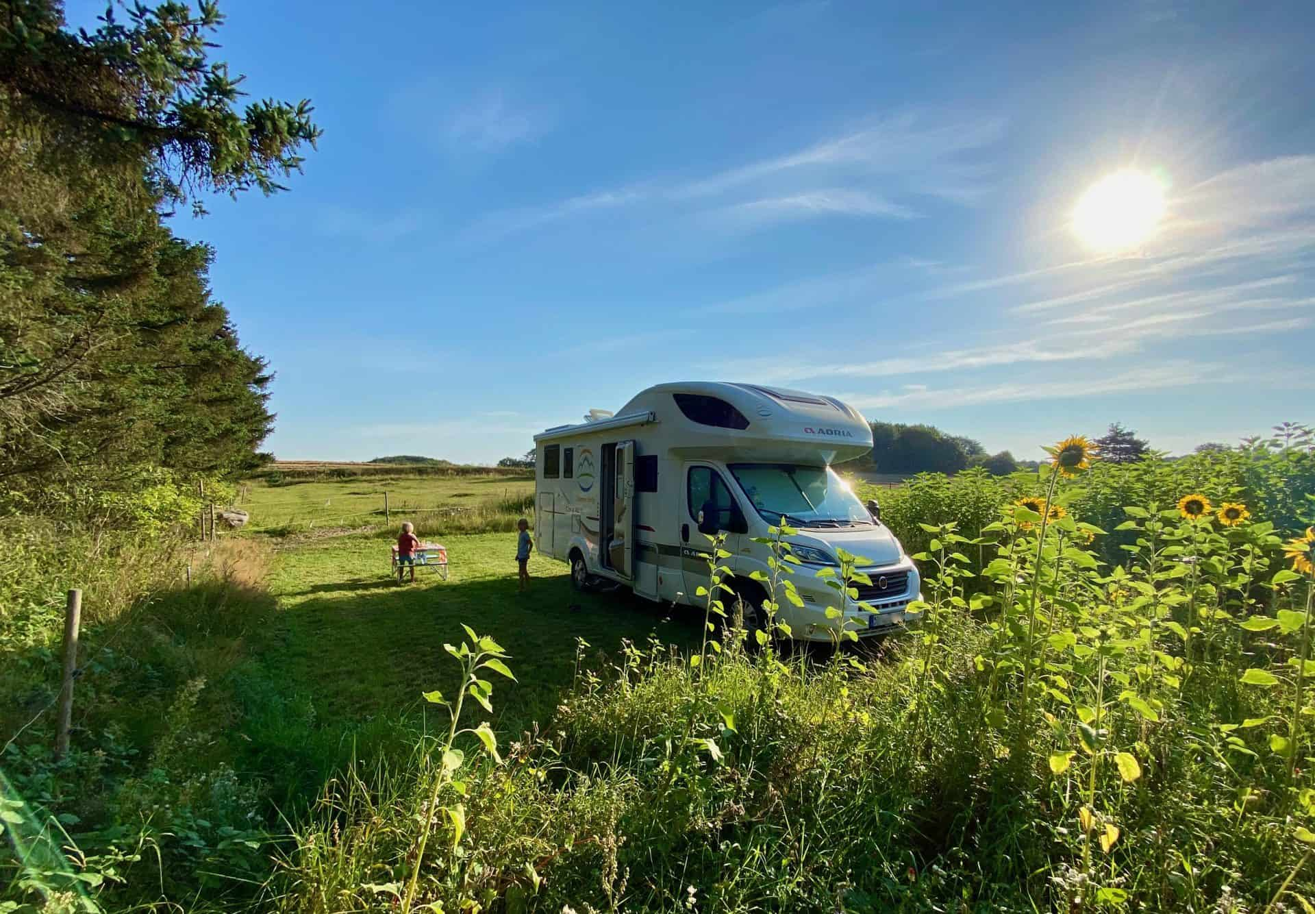 Reise-Wohnmobil-Daenemark-Pintrip-Sondergaard-Wohnmobil-Frühstück-Sonnenblumenfeld