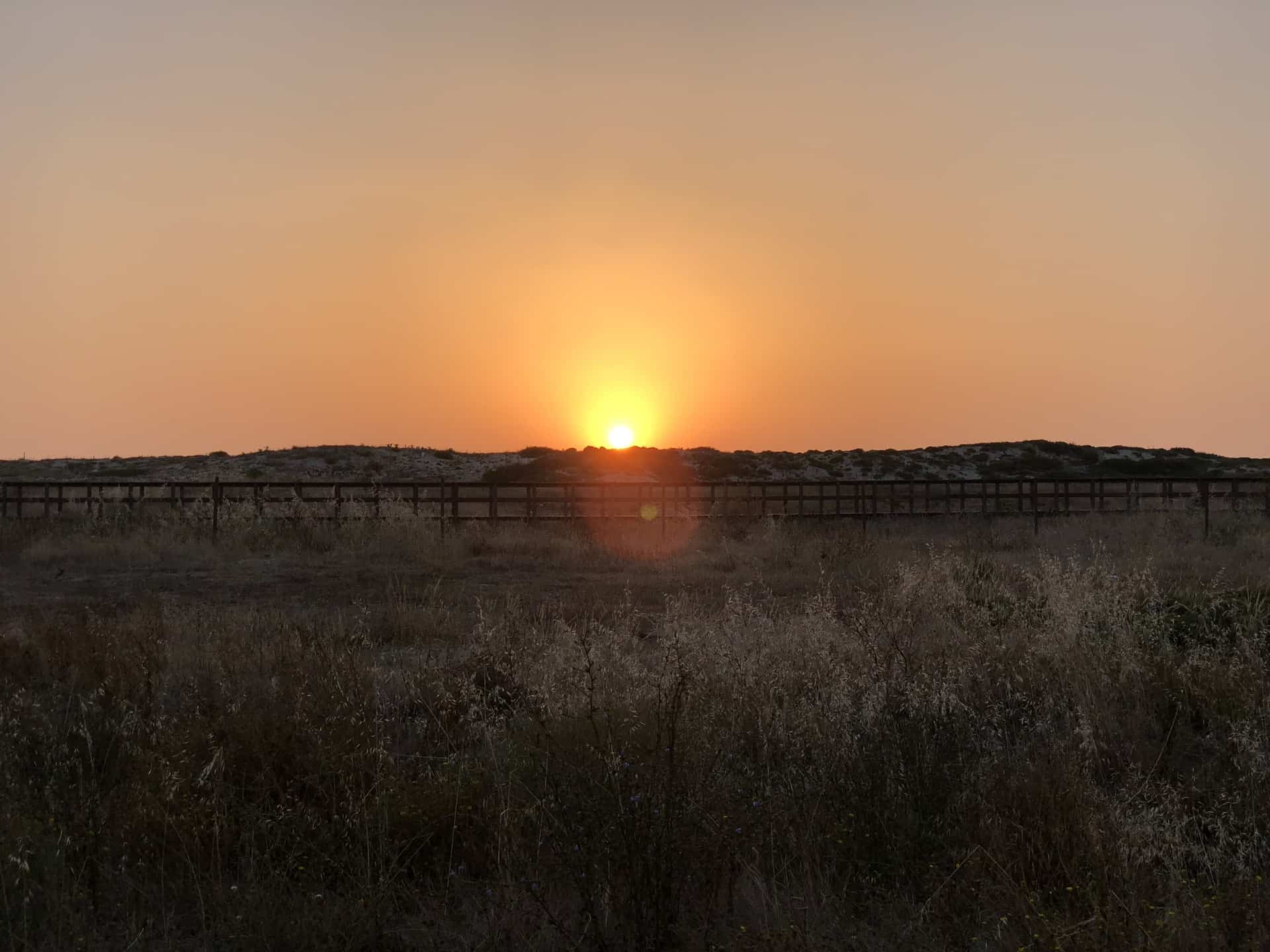 Schöner_Sonnenuntergang_19